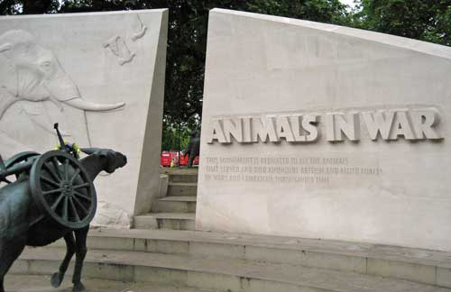 Animals_in_war1