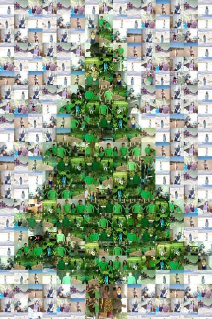 Christmastreeforweb