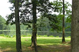 Texas_campground2